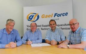 GAEL FORCE GROUP SIGNS