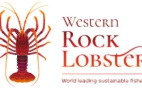 WESTERN ROCK LOBSTER ANNOUNCES
