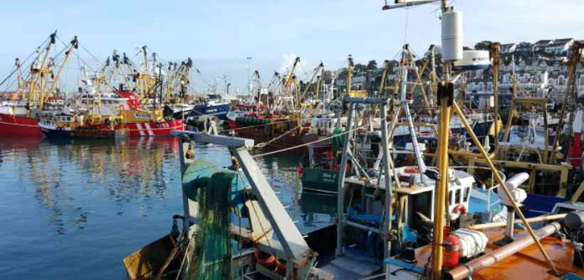 ENGLISH FISHING QUOTA ALLOCATION