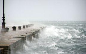 IRISH ADOPT SEAFOOD CLIMATE