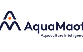 AQUAMAOF REVEALS PLANS