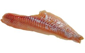 alaska-pollock-producers-in-new-funding-round