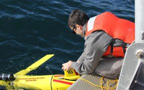 US scientists assessing how wind power development affects fish stocks