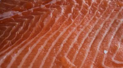 how-technology-could-make-bone-free-fish-a-reality
