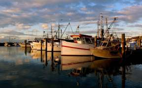 australian-seafood-industry-buoyed
