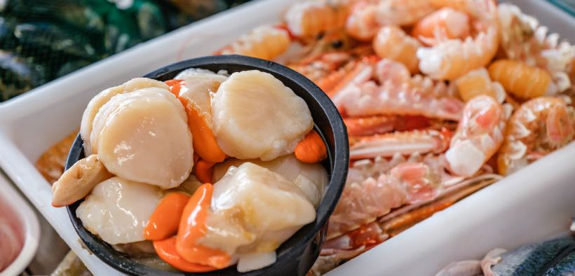scottish-seafood-industry-welcomes-consumer-support