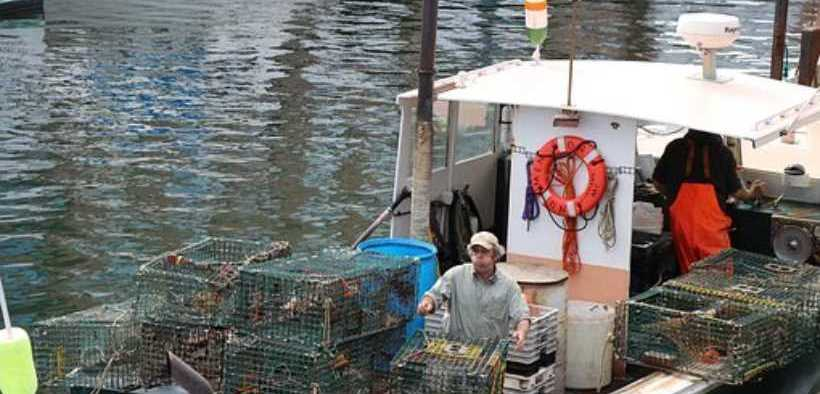 APPOINTMENTS TO US FISHERY