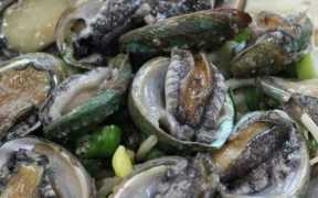 NZ CONSULTS ON PĀUA FISHERIES