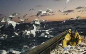 FISHING CREWS URGED TO TURN