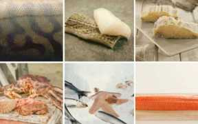 NORWEGIAN SEAFOOD EXPORTS EQUAL
