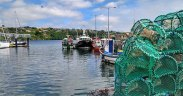 Irish stress importance of good Brexit deal for fisheries