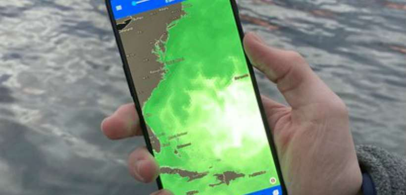 global-ocean-data-in-the-palm-of-your-hand