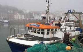 EU CONTINGENCY PLANS FOR FISHING