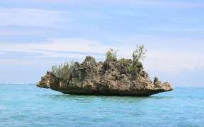 ipnlf-call-to-reduce-overfishing-of-indian-ocean-yellowfin-tuna-stock