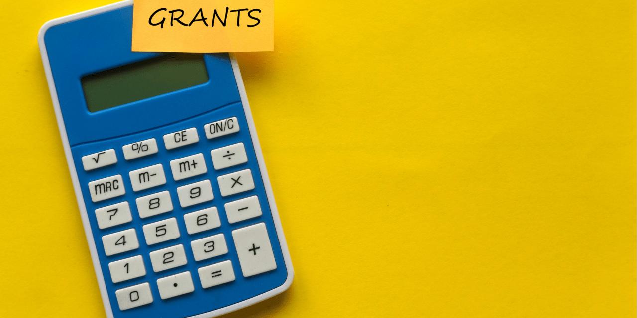 Northern Ireland – Coronavirus: Self-Employment Income Support Scheme – fifth grant