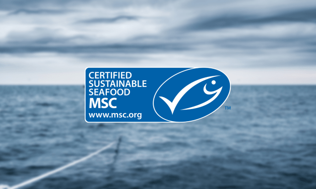 Faroese Fisheries for Cod and Haddock have achieved certification to the MSC Fisheries Standard