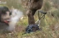 Video: Boar Blindsides Hunter in Close Call