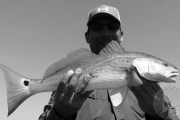 Redfish from the airboat