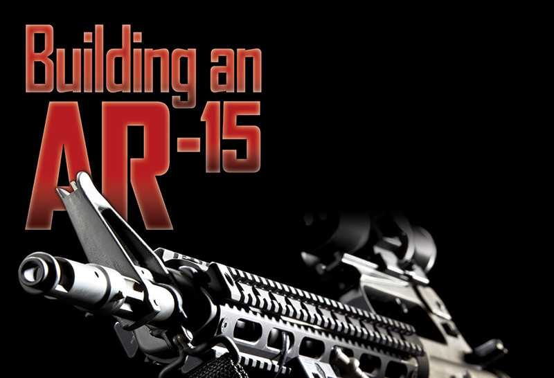 building your own ar 15 texas fish game magazine