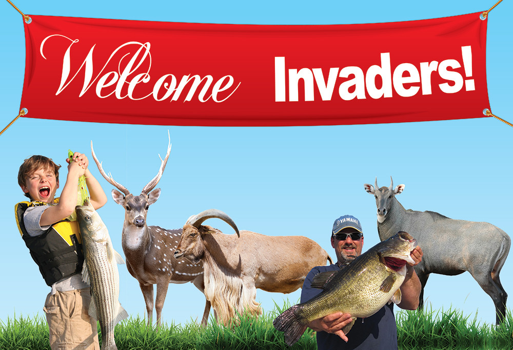 Welcome Invaders Texas Fish Game Magazine