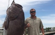 Angler hauls in monster fish off Louisiana shore