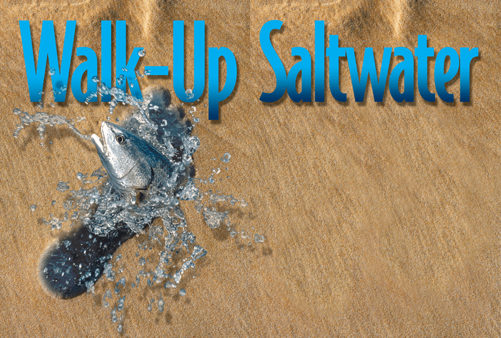 Walk up saltwater location maps species lure baits and for Texas fish and game