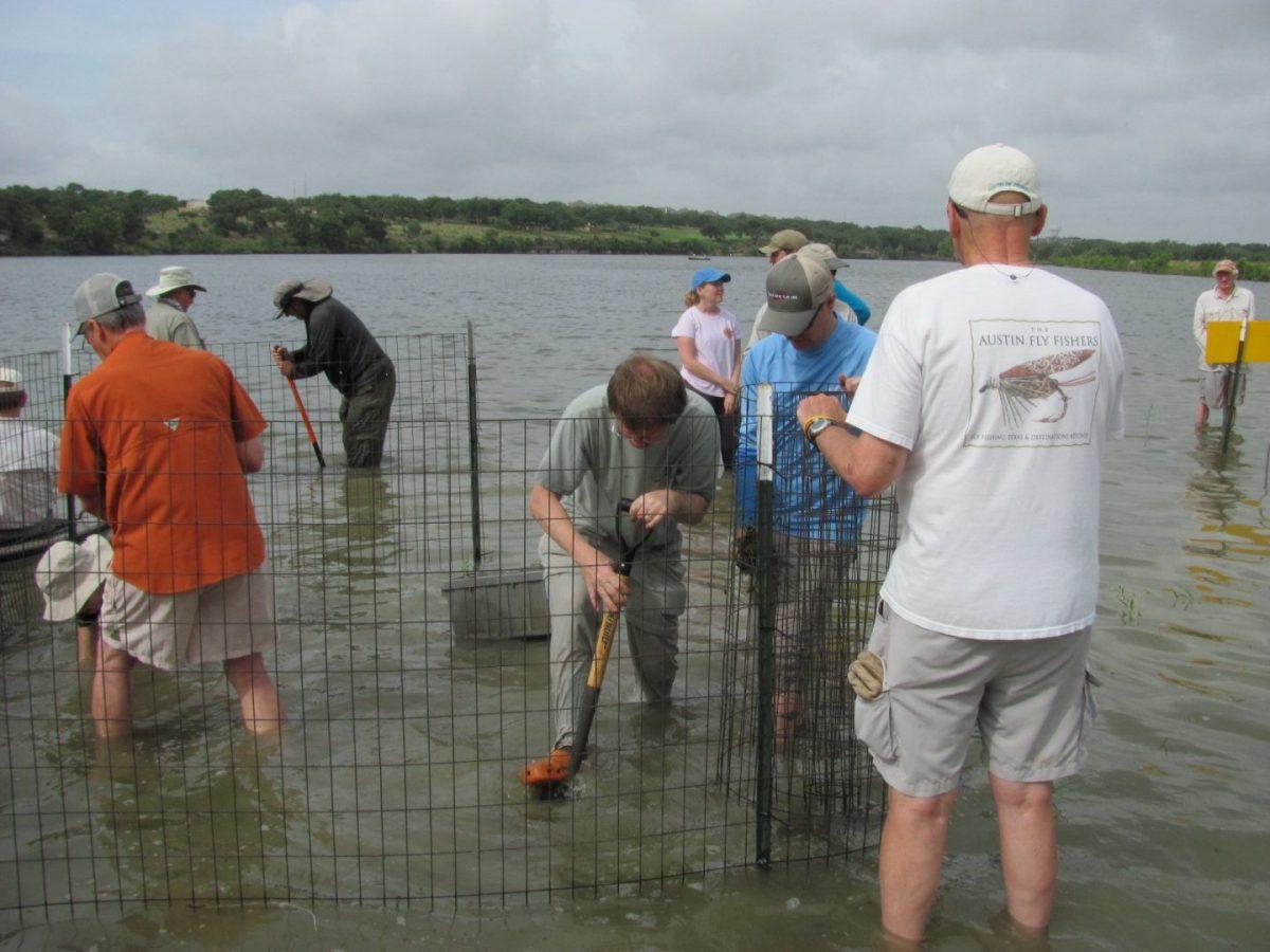Fish habitat at brushy creek reservoir enhanced with for Fly fishing austin texas