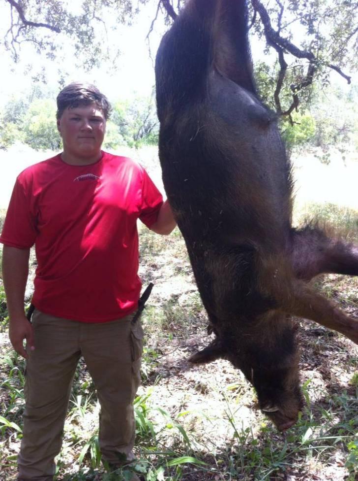 2014-7-First-Boar