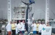 Marlin breaks 1988 TX record