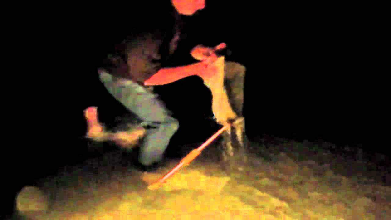 Catching flounder for the hatchery (video)