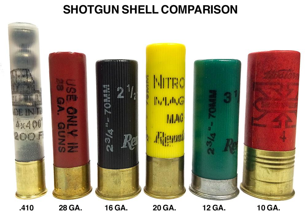 The Decline Of 10 Guage  U0026 16-gauge Shotgun