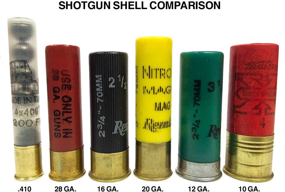 The Decline of 10 Guage & 16-Gauge Shotgun - Texas Fish ...