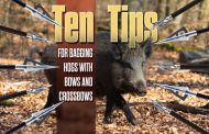 Ten Tips for Bagging Hogs with Bows and Crossbows