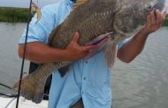 Big Black Drum