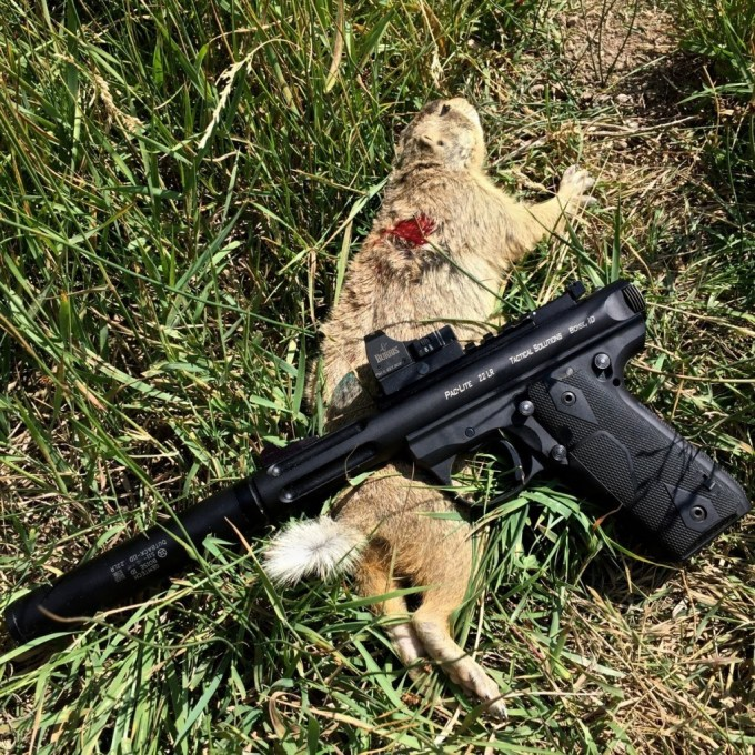 .22LR was pretty ineffective on the prairie dogs, however we did confirm a few shots.