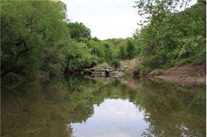 tf&g - texas-fishing-tips-somerville-texas-295x195