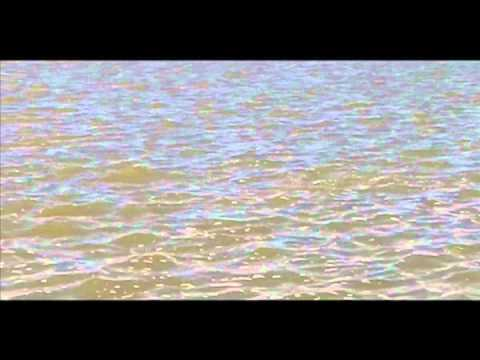 Pink Dolphin (video)