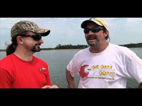 Shades and fishing (video)