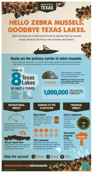 2016_zebra_mussel_infographic