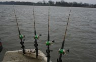 Rigging Your boat for Serious Fishing: Rodholders