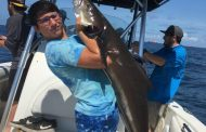 Texas Hotshots - Galveston Cobia