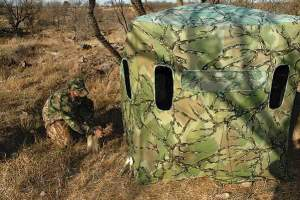 Shaine Nixon of World Slam Outfitters prepares a portable pop-up blind for hunting the mesquite country near Throckmorton.