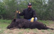 Texas Hotshots - Big Boar