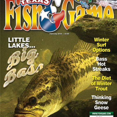 and texas game books fish