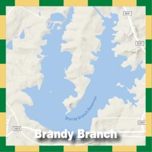 Brandy Branch
