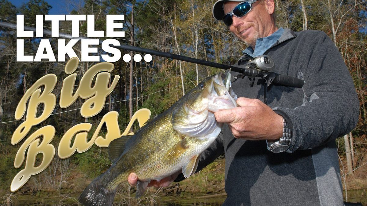 Little Lakes, big bass
