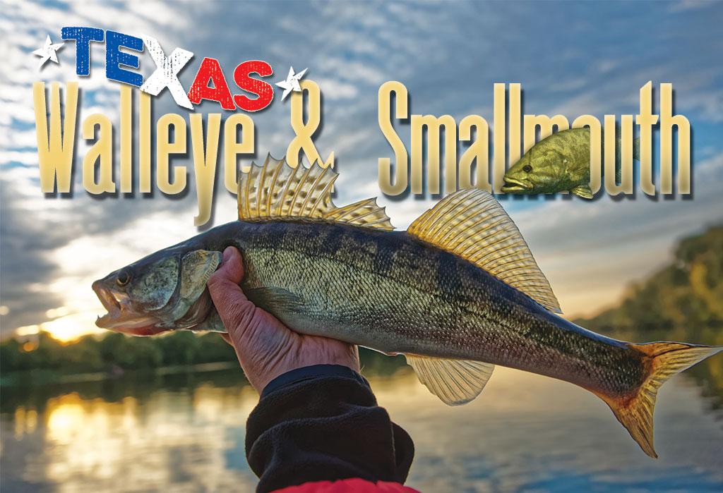 WALLEYE & SMALLMOUTH IN TEXAS? - Texas Fish & Game Magazine