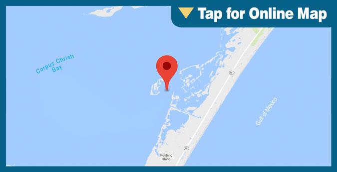 Corpus Christi Bay: Shamrock Cove