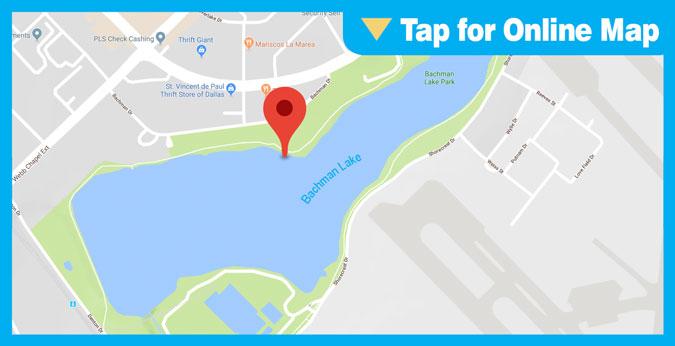 Bachman Lake HOTSPOT: Main Lake or Bridge Area