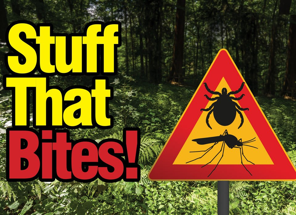 Warning! Ticks & other biters!